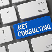 .Net Consulting Services