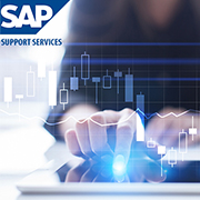 SAP Support Services