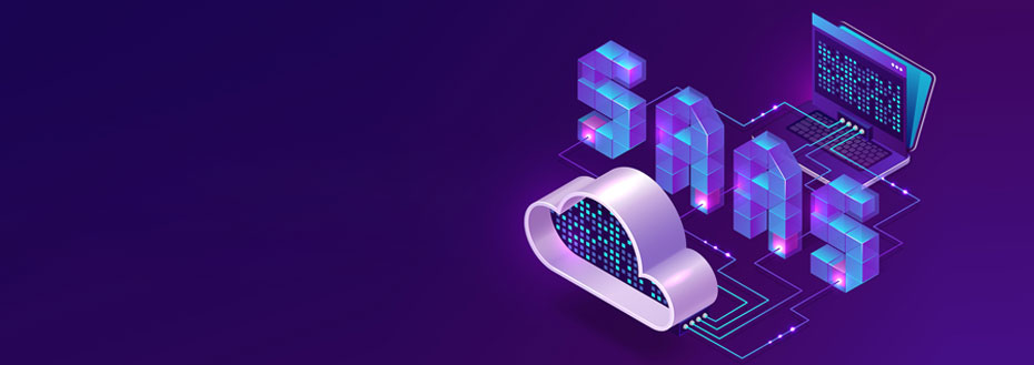 Outsource SAAS Application Development Services