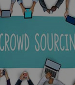 Crowdsourced Testing Services