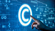 Intellectual Property Based Development Services
