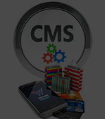 Open Source CMS Development