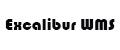 Excalibur WMS