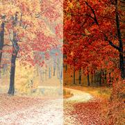 Outsource Photoshop Color Correction Services