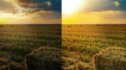 Stock Photo Resizing and Enhancement