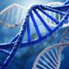 Bio-Molecular Illustrations