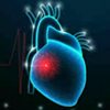 Cardiology Animations