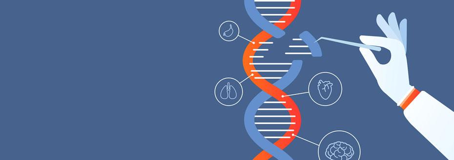 Outsource Genetics Transcription Services