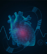 Cardiac PET/CT Reporting Services