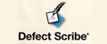 Defect Scribe