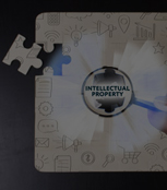 Intellectual Property Research Services