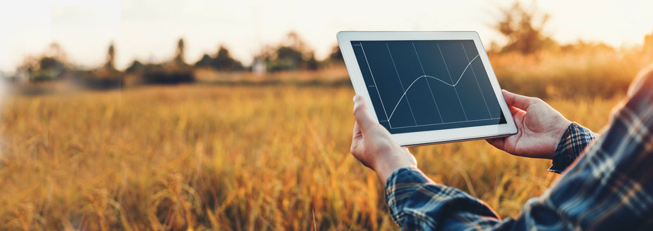Outsource Agricultural Market Research Services