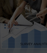 Survey Analytics Services